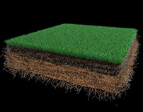 Grass in the ground - 3D