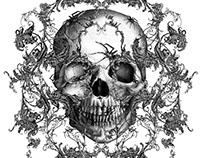 Spiders & Skulls