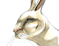 Wild Rabbit Man