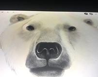 Polar capped