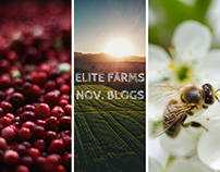 November Blogs | Elite Farms