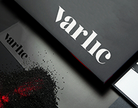 Verlic Business Identity Design
