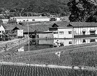 Jun (Southern Nara)