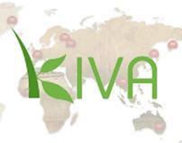 Kiva Interactive Banners