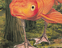 The adventures of Fishchicken.
