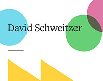 David Schweitzer Online Identity and Site Design