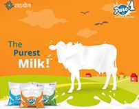 Dairy Brand Digital Marketing, Branding, Advertising