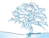 water tree