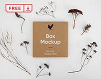 Free Small Box PSD Mockup