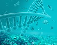 ID-Gene Communication material