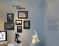Suave & Valiant Exhibition Design