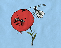 Animation - Berry and Insect