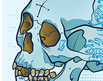 Illustrated Skull Poster
