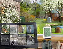 Cameras in your Garden | Stuart Jackson-Carter