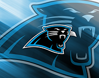 Panthers Add Depth to Tight End Position