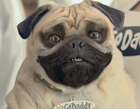Go Daddy - Pug