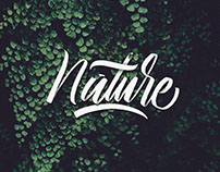 Brushpen Lettering Nature Series