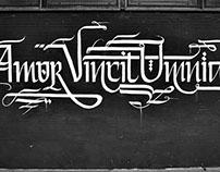 Lettering//Wall//Typograff