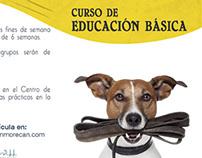 Díptico Curso de Educación Morecan