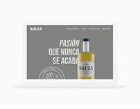 Pisco Bauzá / Layout Web