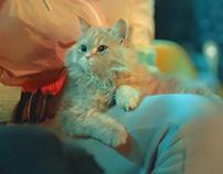 Infinix S5 Cat هتشوف العجب