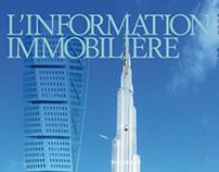 Information Immobilière 2013