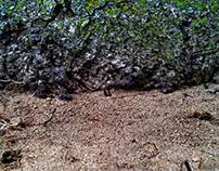 Ground walls