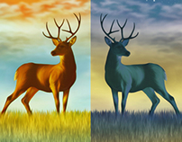 Deer Illustration - 2013