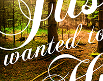 Maine: Restore the North Woods