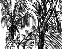 Costa Rica sketchbook