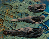 Freshwater Vertabrates