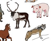 Животные разных миров нашей Земли