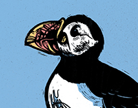 Keep on Puffin
