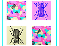| COLORSBEETLE | Insect print for curious kids