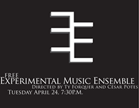 Experimental Ensemble Poster