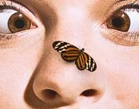 Como Zoo Butterflies Exhibit