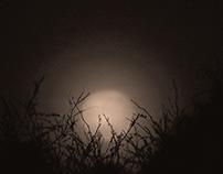 always a moon