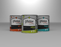 Glidden branding & marketing plansbook