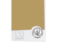 LXI Anniversary Invitation