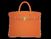 Hermès Birkin Bag  Icon