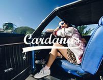 Cardànas
