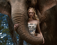 D´SCENE: Autumn For The Elephants