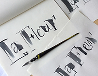 Lettering & Calligraphy Sketch Collection