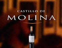 Millohorarios / Castillo de molina