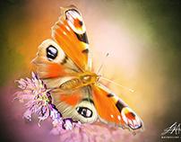 Beautiful Butterflies Digital Art by Wayne Flint