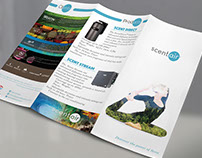 BROCHURE DESIGN COLLECTION