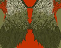 Bird symmetry