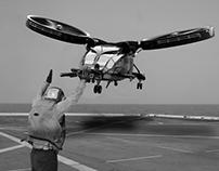 Landing at Sea