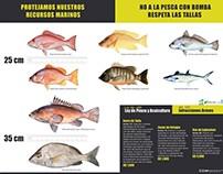 Pesca Responsable