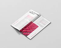 DL Brochure / Magazine Mockup
